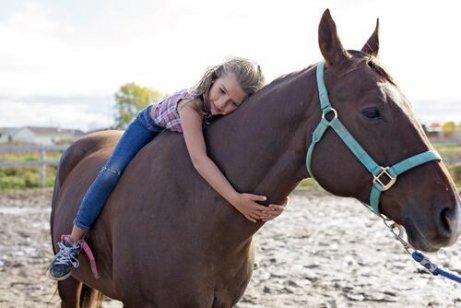 atınız sizi seviyor mu
