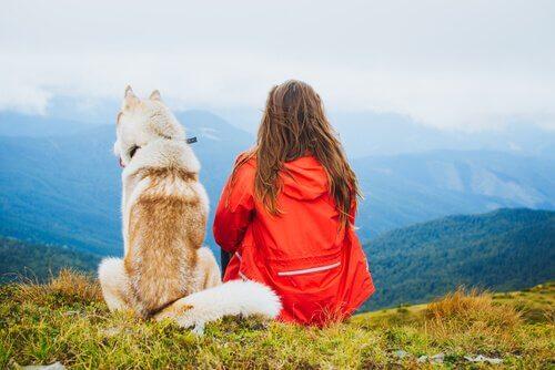 Mutlu Olmak için Evcil Hayvan Sahiplenin