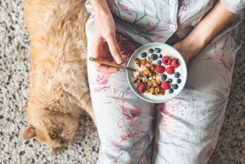 kahvaltı ve kedi