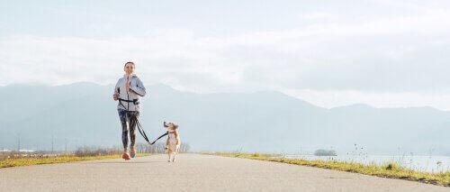 Köpeğinizle Birlikte Koşmanın Faydaları