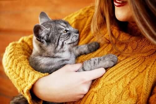 kediye sarılan kadın