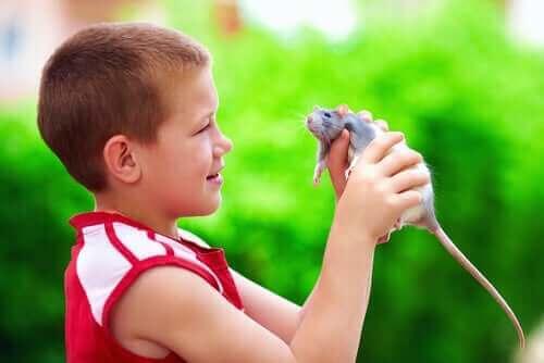 elinde sıçan olan çocuk