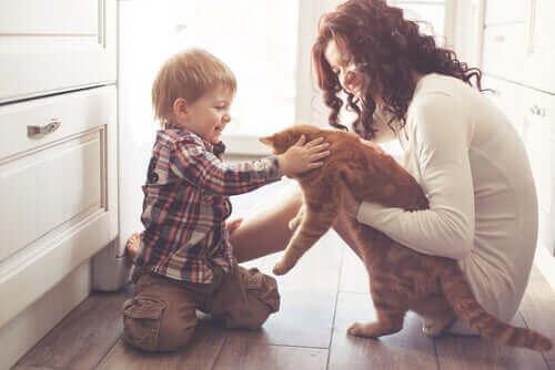 Evcil Hayvanların İnsan Yaşamı Üzerine Etkisi