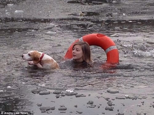 Köpeği Kurtarmak İçin Donmuş Göle Atlayan Kız