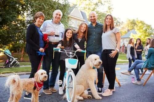 Köpeğiniz ve Komşularınız: Yasal İşlemler