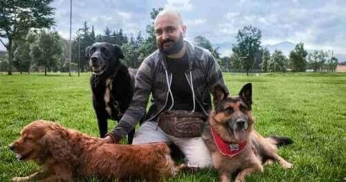 Agresif Bir Köpeği Yeniden Eğitebilmek Mümkün