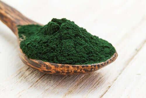 toz halinde yeşil spirulina