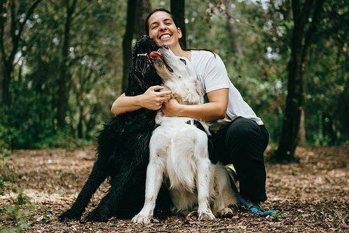 Besitzer mit Hund