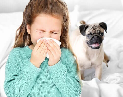 alerjik reaksiyon