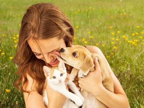 kedi ve köpek sahiplenen kadın