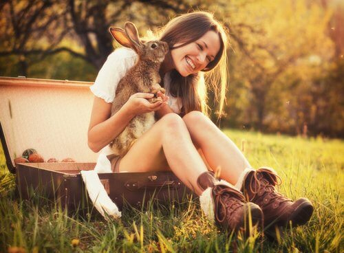 evcil hayvan olarak tavşan