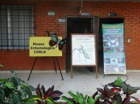 entomoloji müzesi girişi