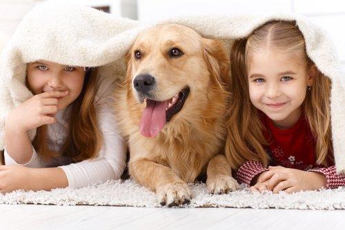 Labrador köpeği olan çocuklar.