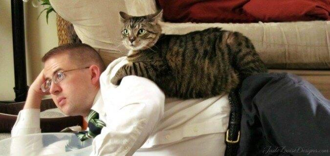 Kedinizle İlişkinizi Güçlendirmek