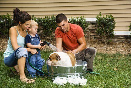 bahçede köpeği yıkayan aile