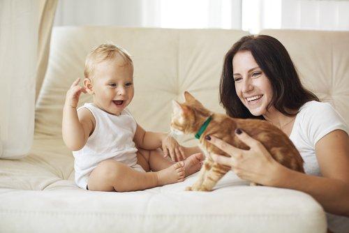 sarı saçlı bebek ve sevimli kedi