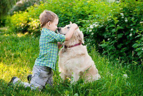 Çocuğunuz Köpeğinizin Vücut Dilini Anlamalı