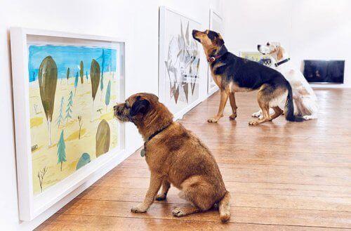 Dünyadaki İlk Köpekler İçin Sanat Sergisi