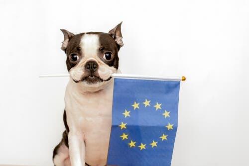 Evcil Hayvanların Korunmasına Dair Avrupa Sözleşmesi