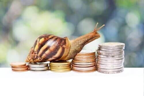 Üstünde Hayvan Resimleri Olan Bozuk Paralar