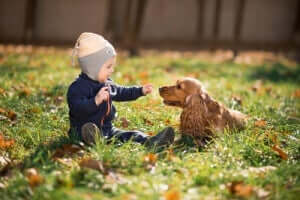 köpek ile oynayan bebek