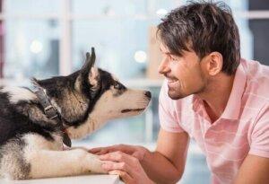 Köpekler sahiplerini taklit edebilir