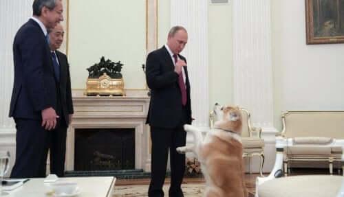 Vladimir Putin'in Köpeği Japon Gazetecileri Korkutuyor