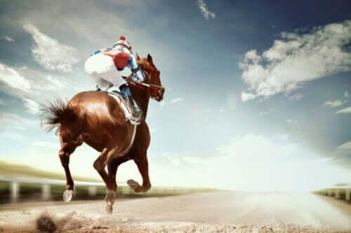 Yarış Atı Hastalıkları: En Sık Görülenler