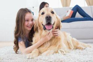 Bir köpekle beraber yaşamak