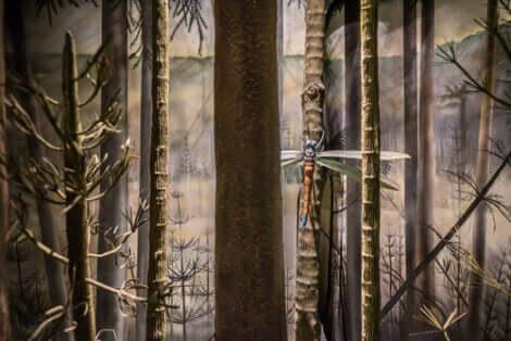ağaçtaki dev böcek