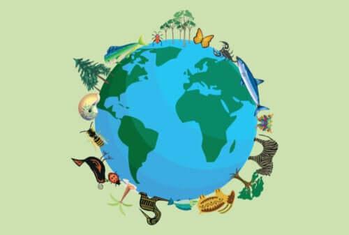 Dünya üzerinde kaç çeşit hayvan türü var?