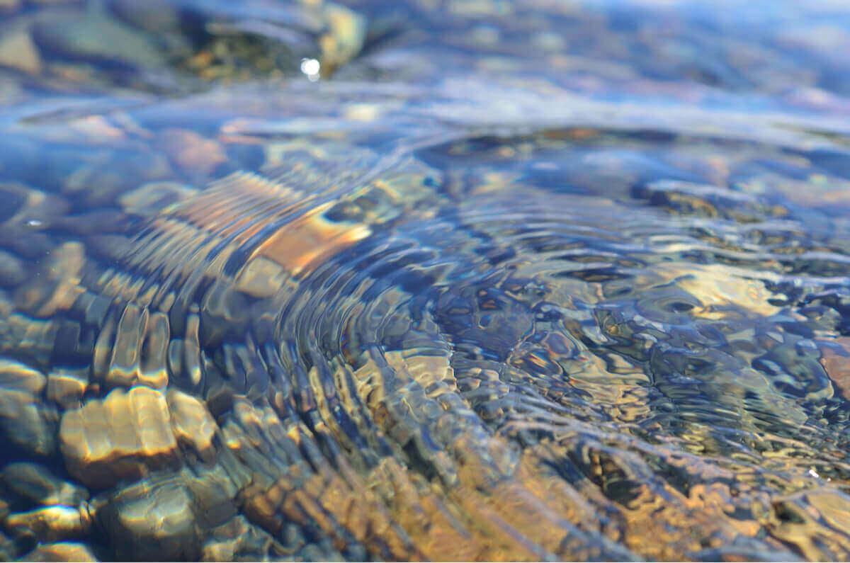 Temiz bir nehir
