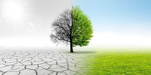 altıncı kitlesel yok oluş: iklim değişikliği