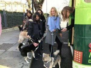 Köpekleri ile otobüse binen sahipler
