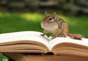 Okumanız Gereken 9 Zooloji Kitabı