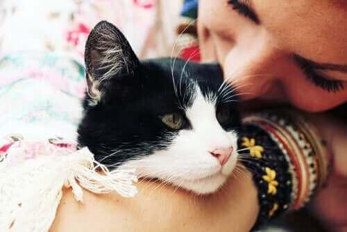 saroldığı kedisini öpen mutlu kadın