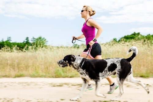Köpeği ile koşuya çıkmış bir kadın.