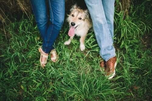 Köpeklerle kadınlar ve erkekler