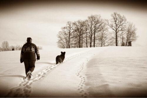 karda sahibiyle yürüyen köpek