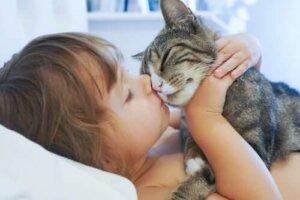 Kedisini öpen bir kız çocuğu