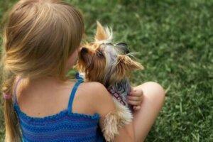 Köpeği ile oynayan kız