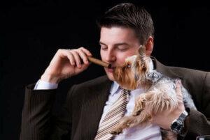 Köpeğinin yanında puro koklayan biri