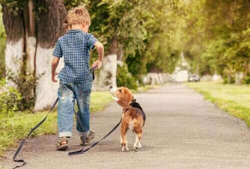 Çocuklar ve Evcil Hayvanlar Neden Harika Anlaşır