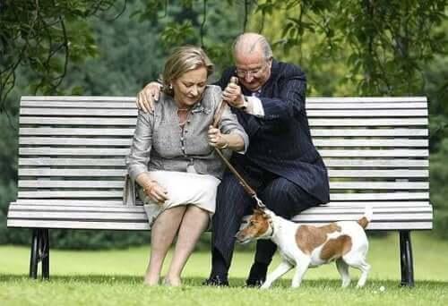 Avrupa Kraliyet Köpekleri İle Tanışın