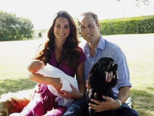 İngiliz kraliyet üyelerinden bazıları ve köpekleri.