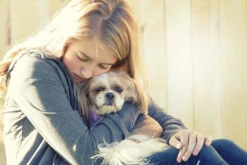 depresyon tedavisi gören köpek