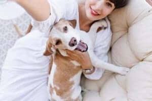 köpek sahibiyle yatakta selfie