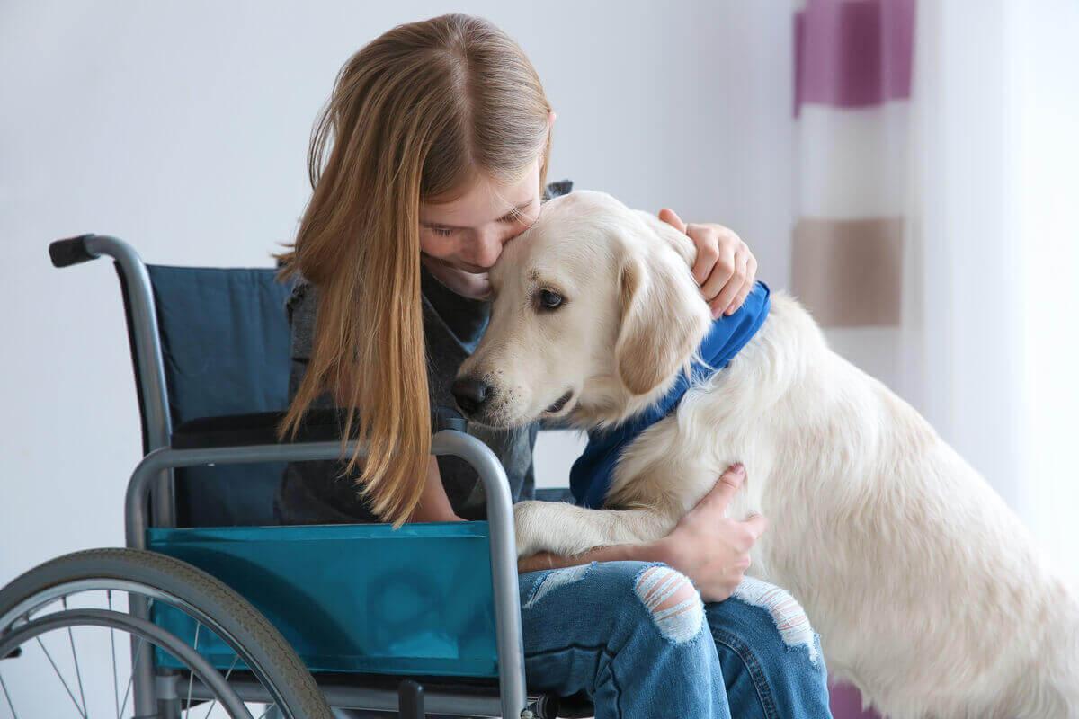 köpeğine sarılan tekerlekli sandalyede oturan kız