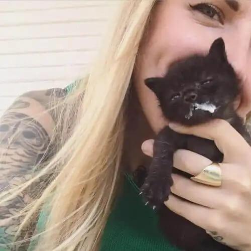 kedi munay ve kitten lady