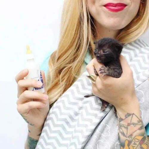 Kitten Lady: Yüzlerce Kediyi Kurtaran Kadın